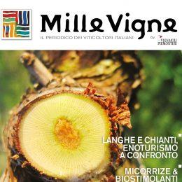Millevigne copertina
